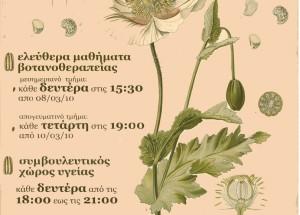 mathimata botanotherapias