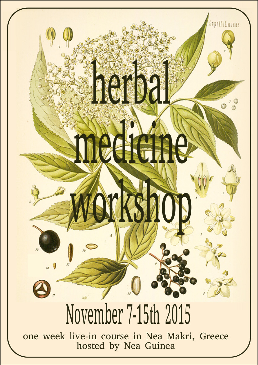 herbal medicine english Nov2015_p1